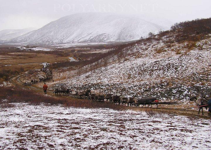 Аргиш на границе парка по Б.Ханмею