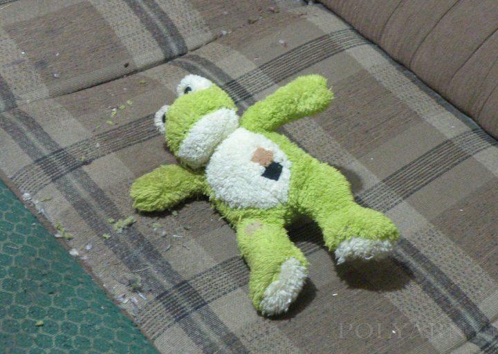 Мягкая игрушка, брошенная горностаем