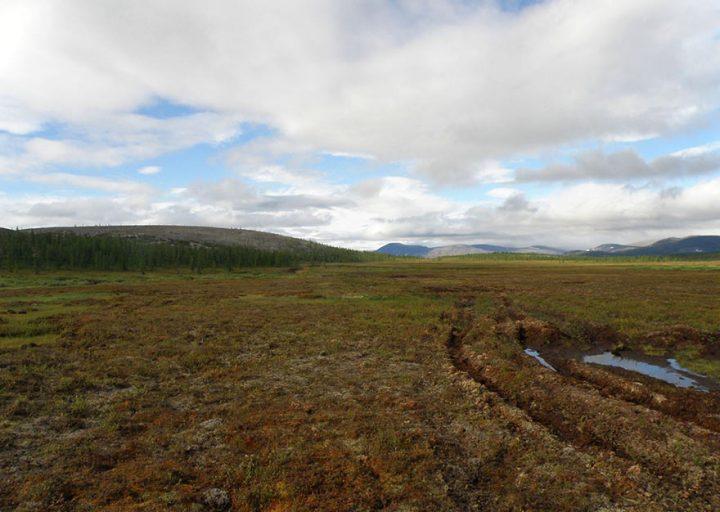 Долина Б.Лагорты. Слева на пологой горе Янаслорское медно-молибденовое большое рудопроявление