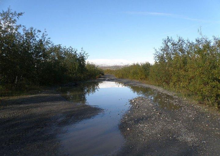 Дорога от поселка к позиции дивизиона 181-го полка 1961 г.