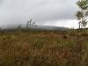 Вид от стартовых позиций на Пайпудынский хребет