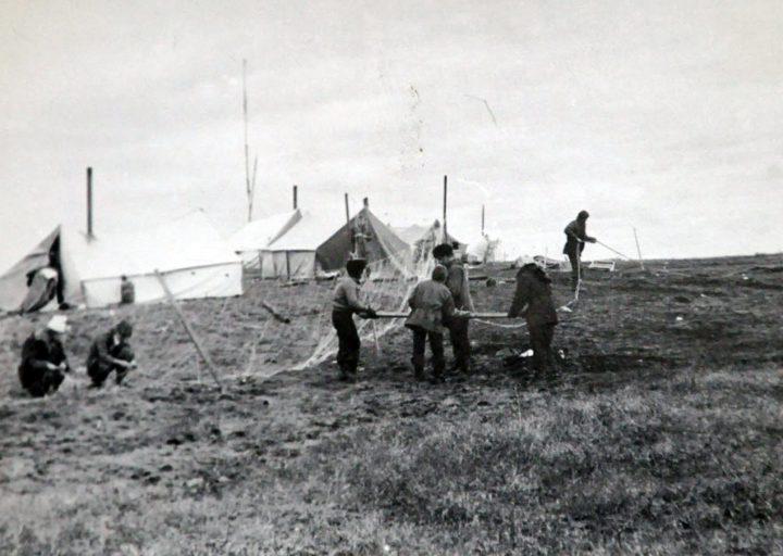Лагерь на Каре. Чиним сеть
