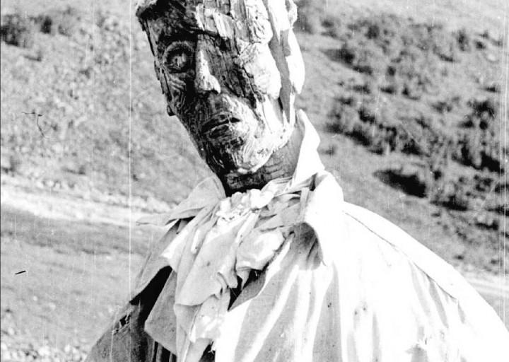 Деревянный геолог