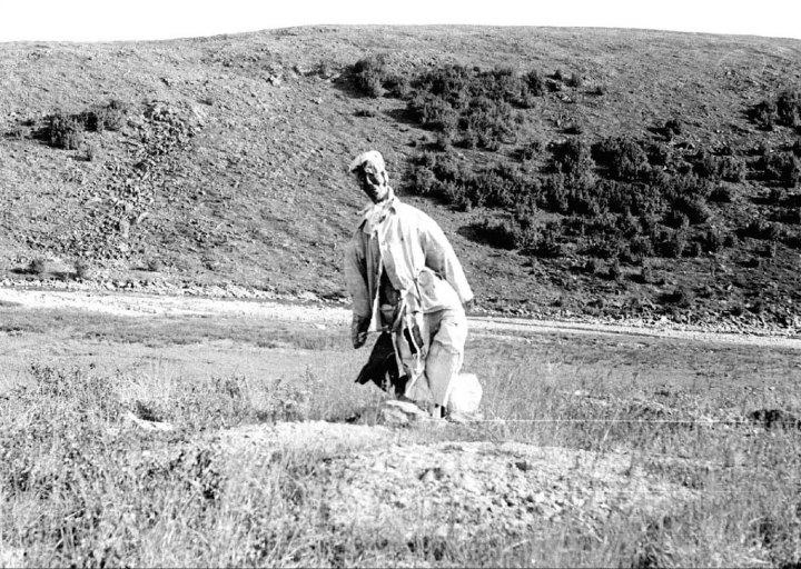 Идол или деревянный геолог. 1976 г.