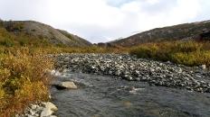 molibdenitovaya-menyaet-ruslo-osnovnogo-potoka