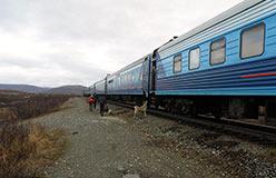 Остановка скорого поезда Полярная Стрела на 110-м