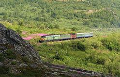 Поезд того же сообщения приближается к Полярному в 2006 г