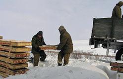 Обработка керна на базе в Полярном. 2009 год