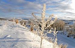 Утренний морозец в верховьях Соби