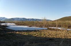 Долина Пайпудыны перед слиянием с Собью. Вид с кожима 7.06.2015