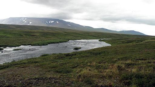 Река Собь, вдали участки Шлем и Хребетшор. 04.08.2015