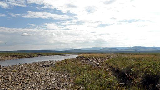 Река Харута выше поворота к железной дороге