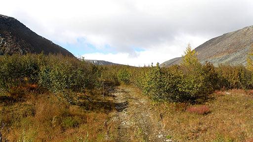 Бывшая база ГРП №77, дорога на участок месторождения Подснежное