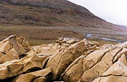 Дуниты Конгорского перевала