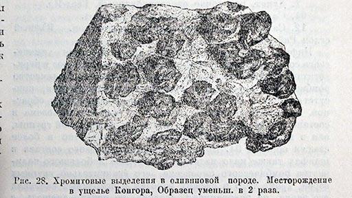 Заварицкий А.Н. Хромитовые выделения в оливиновой породе