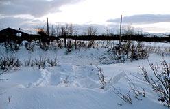 Каскад из двух обрывов 2 и 3 метра и импортный бульдозер CAT проломил лед старицы за гостиницей