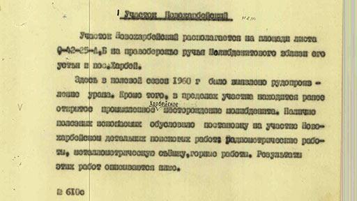 Новохарбейское 132