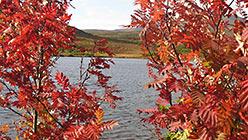 Озера в долине Б.Ханмея