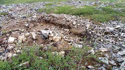 Старые хитнические раскопы на участке Кордон