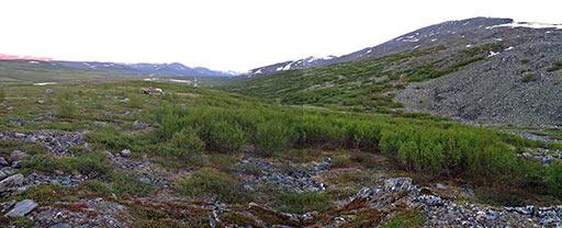 Участок Обрывистый. Вид от северной каменоломни. 2010
