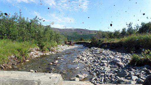 Углубление русла ручья Восточный Нырдвоменшор направленным потоком паводка