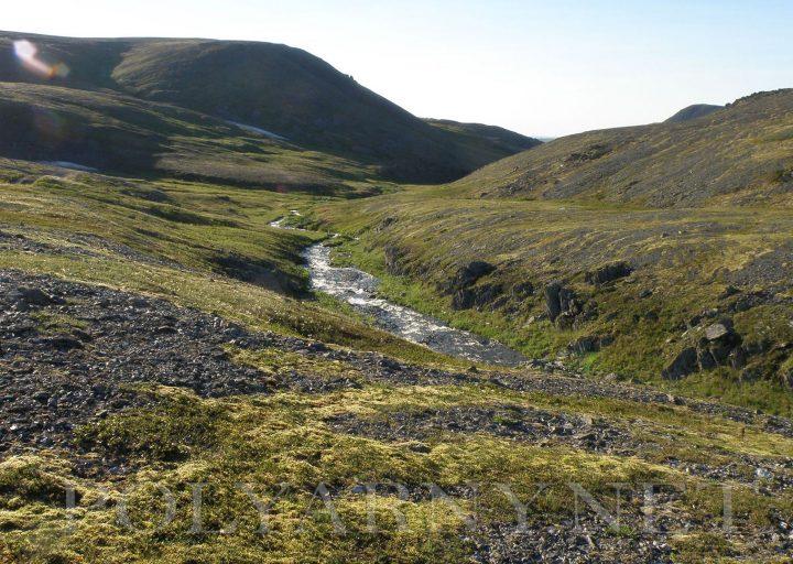 Дорога и ручей из-под Хараматолоуского перевала